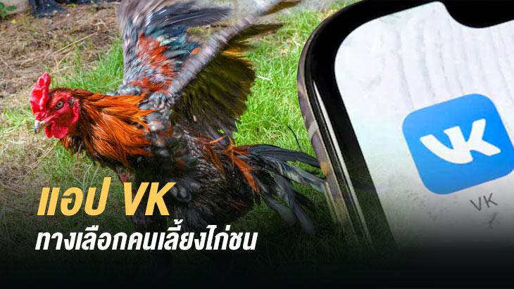 App VK โซเชียลมีเดีย ทางเลือกของคนเลี้ยงไก่ชน