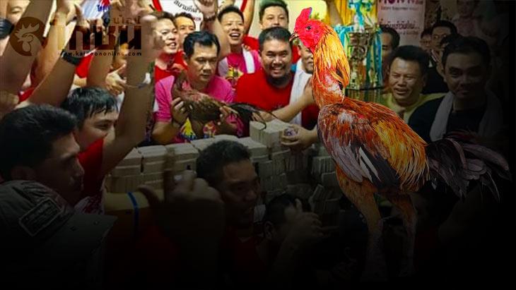 สุดยอดไก่พม่า เจ้าหยกคีรี คว้าชัย 33.7 ล้าน สนามกีฬาไก่ชนเทิดไท