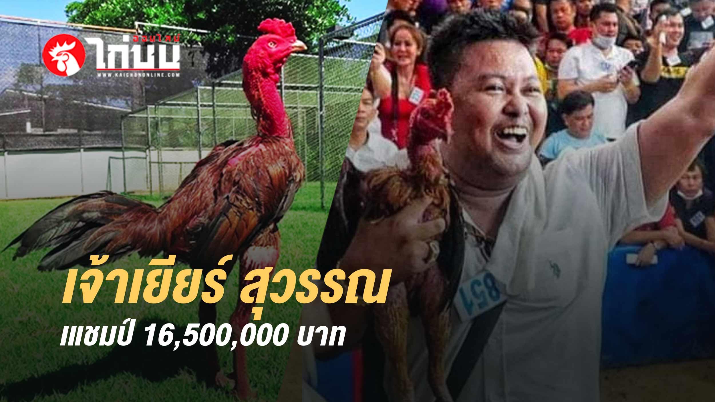 เจ้าเยียร์สุวรรณ  ซุ้ม ส.มีวรรณทีม แชมป์ 16,500,000 บาท