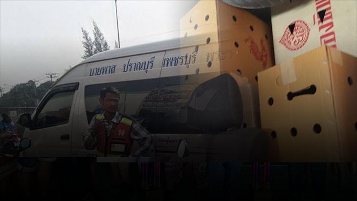 ขนส่งเตรียมเรียกปรับรถตู้ หลังผู้โดยสารโวย ขนกล่องไก่ชนปะปนกับผู้โดยสาร