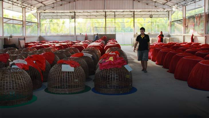 ซุ้มจักรินฟาร์ม ราชบุรี เชิญพี่น้องชาวไก่ชนร่วมงานเปิดตัวฟาร์ม