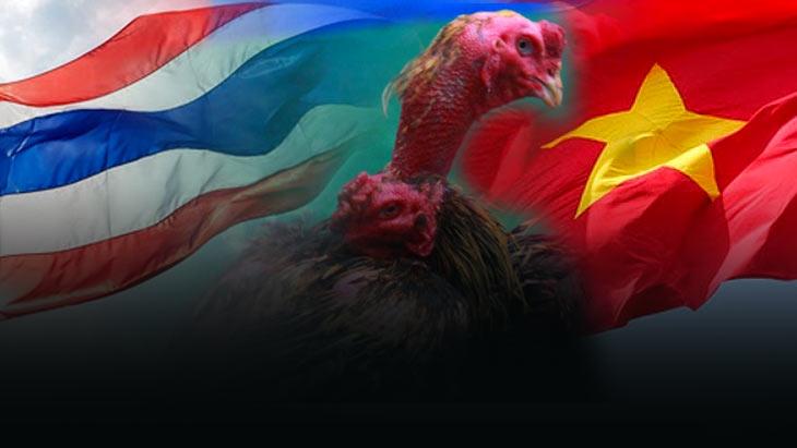 ศึกสายสัมพันธ์ ของยอดไก่ชนสองประเทศ เทิดไทยเตรียมจัดไฟท์หยุดโลก