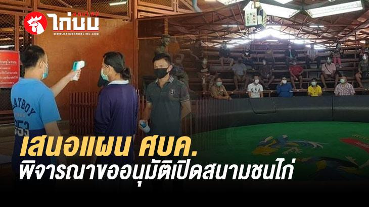 สนามมหาลาภ ทำแผนเสนอ ศบค. และกระทรวงมหาดไทย พิจารณาขออนุมัติเปิดสนามชนไก่
